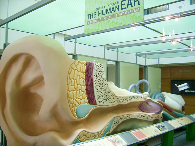 Ear Canal Display